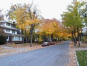 Fall Colors on Emerson Avenue South