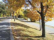 Lake Harriet Bike Path in the Fall
