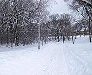 Minnehaha Creek and Path in Winter