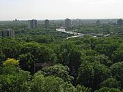 Apartment High-Rises and Tree Canopy