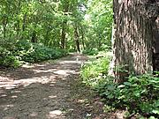 Hiking Path at Fort Snelling State Park