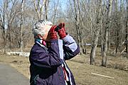 Woman Birdwatching with Binoculars