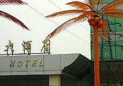 Chinese Hotel, Plastic Palm Trees