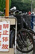 Bicycle Rack and Sign in Chinese