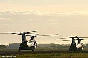 Marine Choppers Taking Off at Sunrise