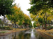 Residential Street in Early Fall