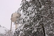 Water Tower and Trees Covered in Snow