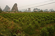 Farm Field and Kurst Mountains, China