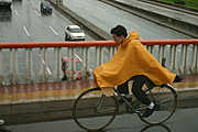 Man Biking in the Rain, Beijing, China