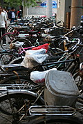 Row of Bicycles Parked in Beijing