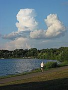 A Single Man Jogging Around the Lake