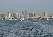 Fishing Boat, Seagulls, and the San Diego Skyline