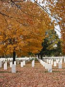 Fort Snelling National Cemetery in Fall
