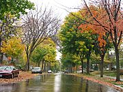 Linden Hills in Fall