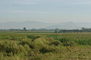 Agricultural Land Near a Mountain Range in Tarlac, Philippines