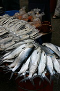 A Display of Fresh Milkfish and Atchara for Sale in Baguio Public Market