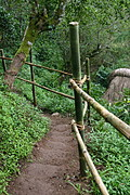 Trail with Steps at the Tam-Awan Village, Baguio City