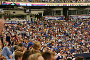 Crowd at a Minnesota Twins Game, HHH Metrodome