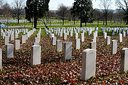 Field of Headstones in Arlington National Cemetery