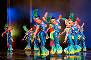 XinJiang RDFZ Dancers Performing as Larks