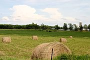 Bales of Hay, Rural Wisconsin Farm