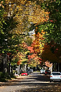 Bedford Street in Prospect Park in Autumn