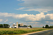 Cornfields and Silos Along Wisconsin Highway
