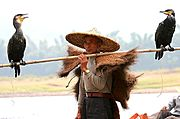 Traditional Fisherman, Li River, China