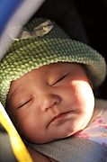 Close-Up of Baby Sleeping in Stroller