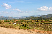 Mountains and Farm Fields in Ilocos Norte