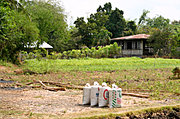 Fertilizer and Field in Las Ud, the Philippines