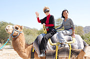 Camel Ride, California