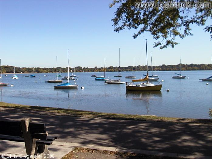 Sailboats Moored on Lake Harriet
