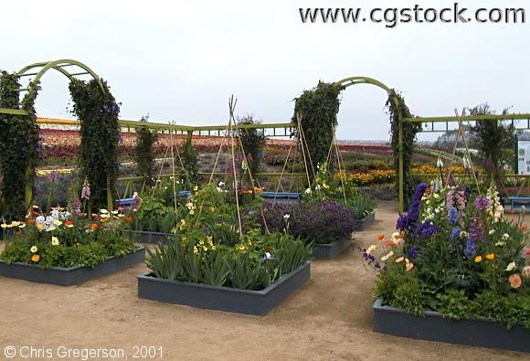 The Enclosed Garden at the Flower Fields