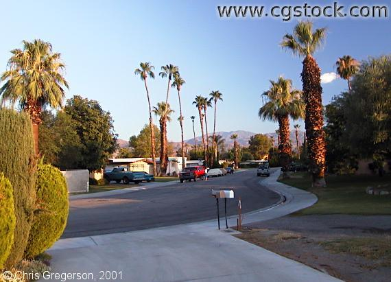 Marigold Drive in Palm Desert
