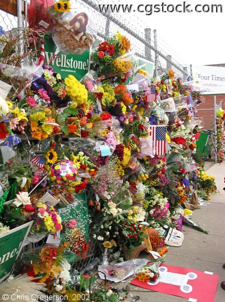 Flowers Outside Paul Wellstone's Campaign Headquarters