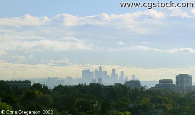 Los Angeles Skyline from Brentwood