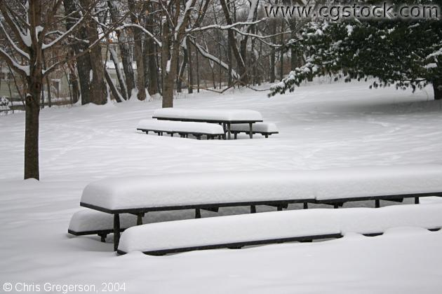 Picnic Benches in Winter