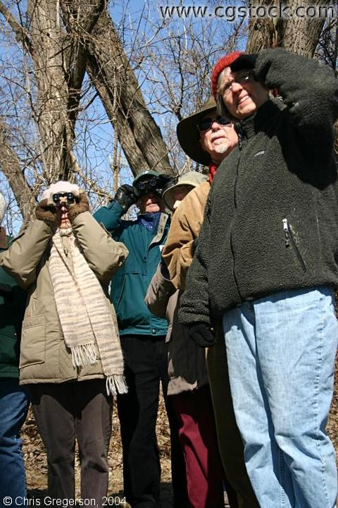 Group Watching Birds
