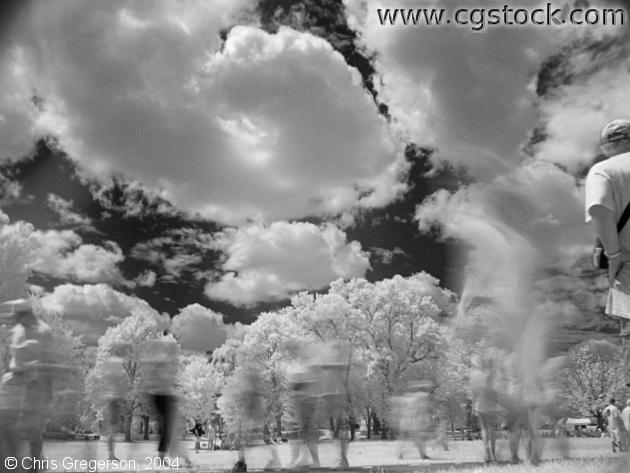 People Walking in the Park, Infrared