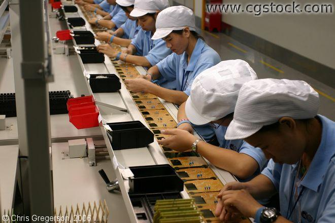 Young Female Workers on an Assembly Line