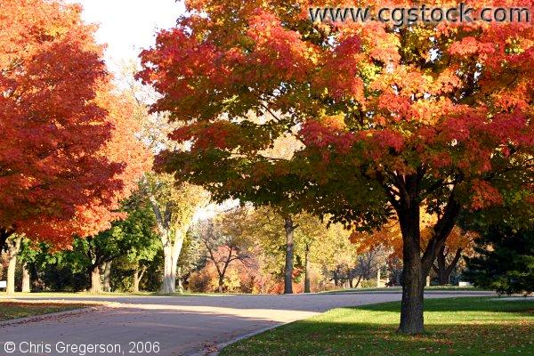Fall Colors at Lakewood Cemetery
