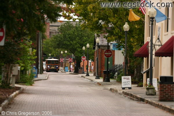 Historic Cobblestone Street, Wilmington