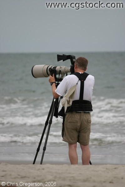 Wildlife Photographer on the Shore of the Atlantic Ocean
