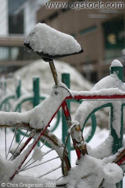 Bicycle, Bike Rack Covered in Snow
