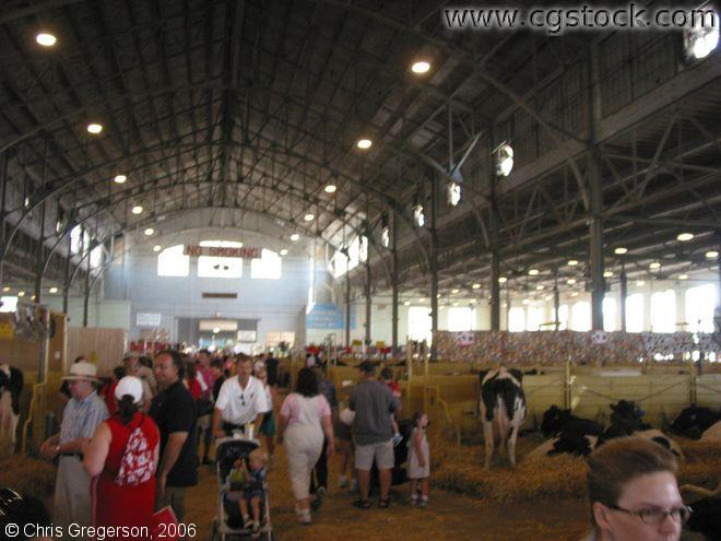 Cow Barn, Minnesota State Fair
