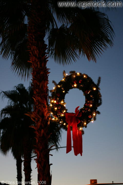 A Christmas Wreath and Palm Tree, Palm Desert, CA
