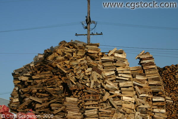 Mountain of Stacked Firewood Against a Blue Sky