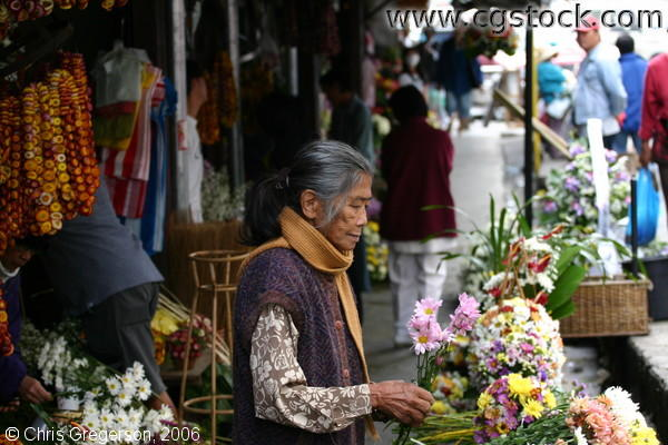An Old Woman Selling Fresh Flowers in Baguio Public Market