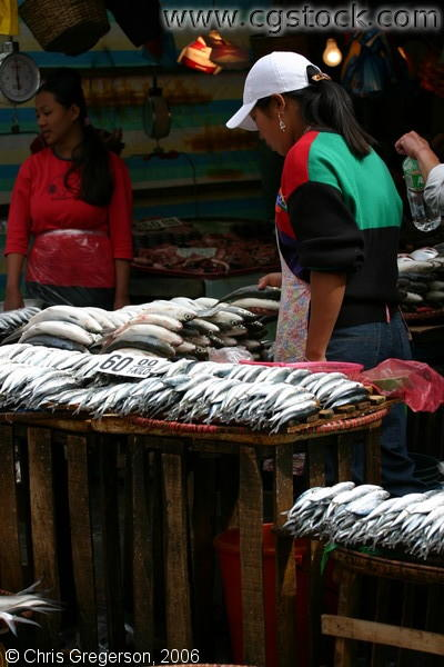 Fresh Fish in the Baguio Public Market, Baguio City, Philippines